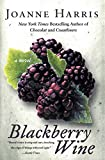 Blackberry Wine : A Novel - book cover picture