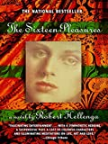Cover Image of The Sixteen Pleasures: A Novel by Robert Hellenga, Omartian published by Delta
