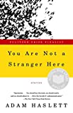 You Are Not a Stranger Here : Stories by Adam Haslett