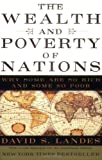 The Wealth and Poverty of Nations: Why Some Are So Rich and Some So Poor - book cover picture