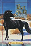 The Black Stallion (Black Stallion) - book cover picture