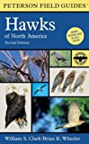 Field Guide to Hawks of North America