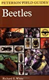 Cover image of A Field Guide to the Beetles of North America