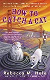 How to Catch a Cat (Cats and Curios Series #6)