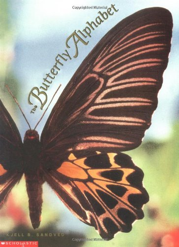 The Butterfly Alphabet by Kjell B Sandved