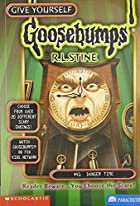 Danger Time (Give Yourself Goosebumps, No 41) de R. L. Stine
