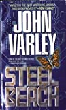 Steel Beach - book cover picture