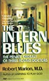 Intern Blues - book cover picture
