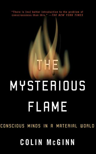 The Mysterious Flame: Conscious Minds in a Material World, by McGinn, C