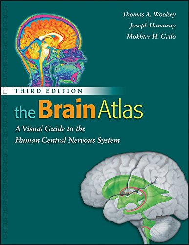 Pdf  The Brain Atlas  A Visual Guide To The Human Central