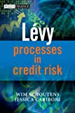 Lévy Processes in Credit Risk