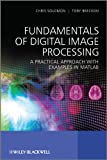 Fundamentals of digital image processing : a practical approach with examples in Matlab |