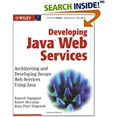 Developing Java Web Services: Architecting and Developing Secure Web Services Using Java