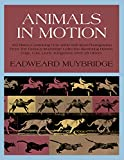 Animals in Motion - book cover picture