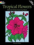 Buy Tropical Flowers Stained Glass Coloring Book from Amazon.com