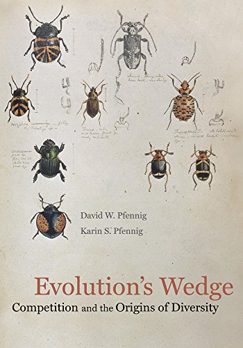 PDF Evolution s Wedge Competition and the Origins of Diversity Organisms and Environments