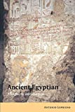 Ancient Egyptian : A Linguistic Introduction by Antonio Loprieno
