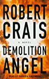 Demolition Angel - book cover picture