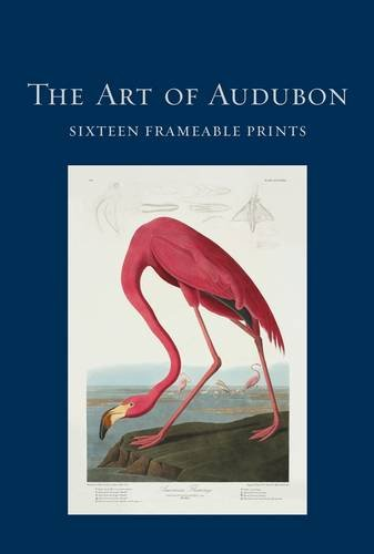 The Art of Audubon: Sixteen Frameable Prints