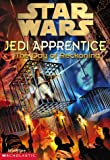 The Day of Reckoning (Star Wars: Jedi Apprentice, Book 8) - book cover picture