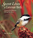 Secret Lives of Common Birds : Enjoying Bird Behavior Through the Seasons