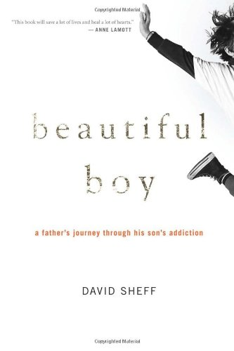 Beautiful Boy: A Father's Journey Through His Son's Addiction, Sheff, David
