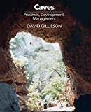 Caves: Processes, Development and Management [paperback]