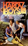 DARKNESS FALLS (HARDY BOYS CASE FILE 89) : DARKNESS FALLS by  Franklin W. Dixon, Ruth Ashby (Editor)