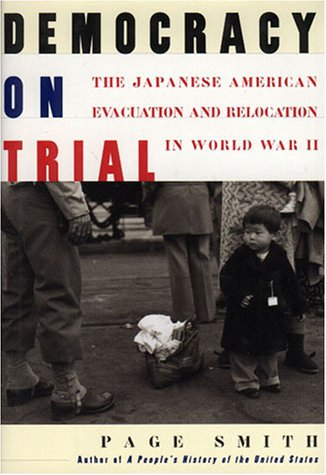 Book Cover for Democracy on Trial