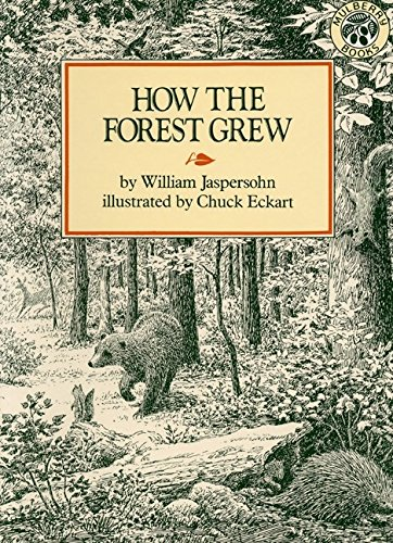 [How the Forest Grew]