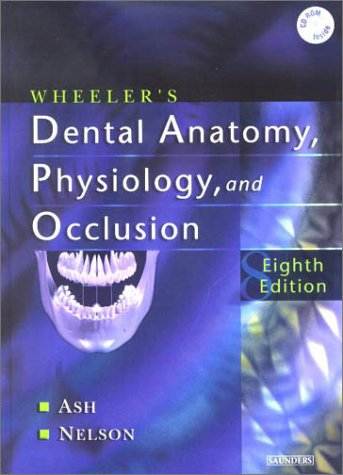 Wheeler's Dental Anatomy, Physiology and Occlusion, 8e - Major M. Ash, Stanley Nelson