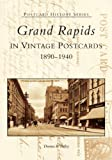 Grand Rapids in Vintage Postcards (Postcard History Series)