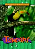 Toucans (Animals of the Rain Forest)
