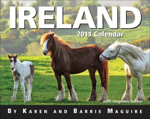 2011 Ireland mini Box Calendar
