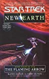 New Earth #4: The Flaming Arrow (Star Trek: The Original Series)