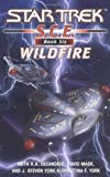 S.C.E., Book Six: Wildfire (Star Trek)