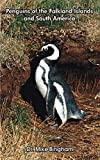 Penguins of the Falkland Islands and South America