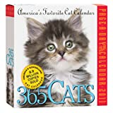 Buy 365 Cats Page-A-Day 2011 Calendar
