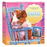 Buy Cute Overload Page-A-Day 2011 Calendar