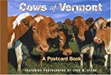 Cows of Vermont: A Postcard Book