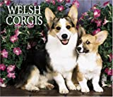 For The Love Of Welsh Corgis 2006 Calendar
