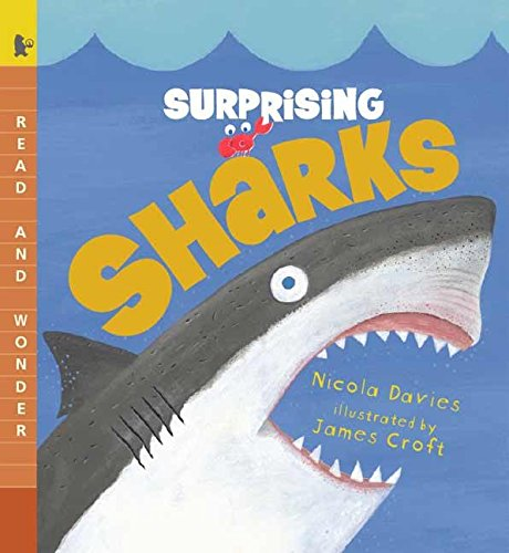 [Surprising Sharks]