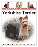 Living With a Yorkshire Terrier
