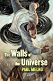 REVIEW: The Walls of the Universe by Paul Melko