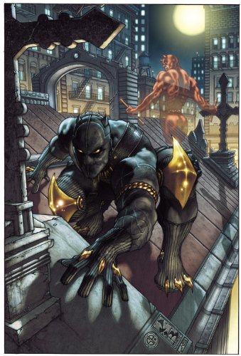 Black Panther: The Man Without Fear Vol. 1 Cover