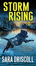Storm Rising by Sara Driscoll