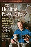 The Healing Power of Pets