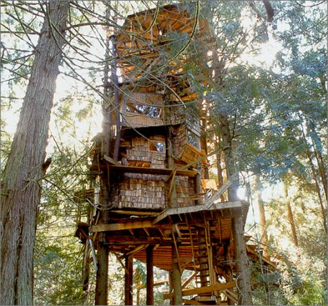 How to Build a Treehouse - Kathryn Vercillo on HubPages