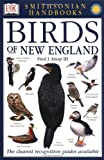 Birds of New England (Smithsonian Handbooks)