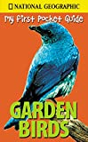 Garden Birds (National Geographic My First Pocket Guides)